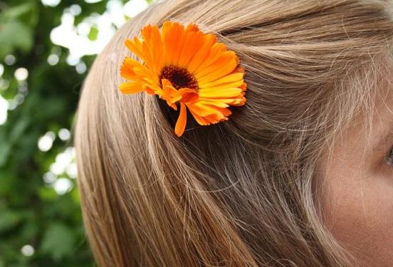 применение календулы для волос, средства с календулой