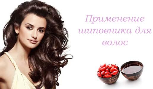 применение экстракта и отвара шиповника для волос