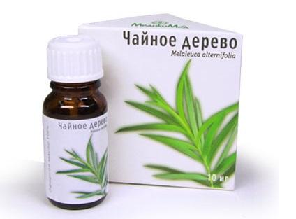 польза и вред масла чайного дерева