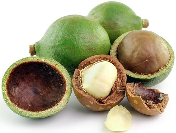 масло макадамии для волос, орехи макадамии