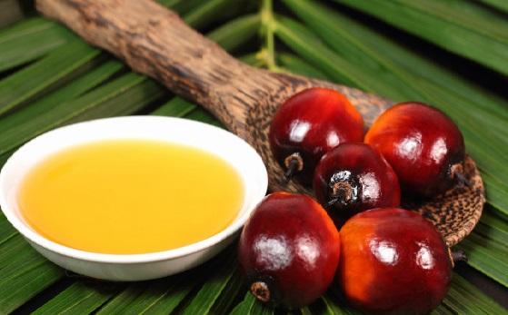 пальмовое масло для волос, польза и вред