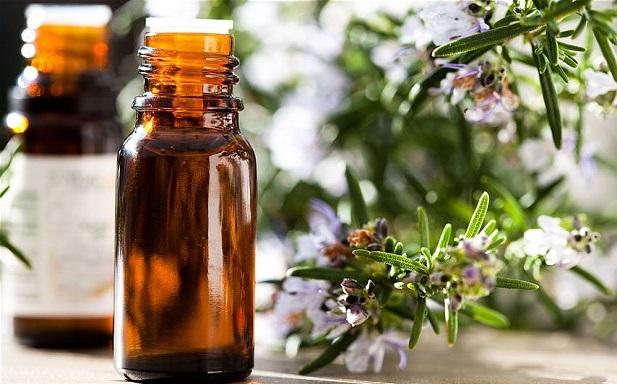 эфирное масло розмарина свойства, качества