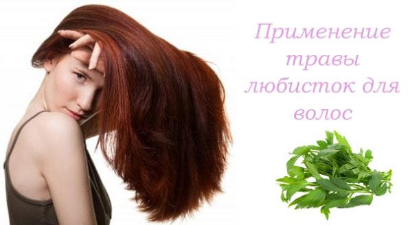 трава любисток, рецепты для волос