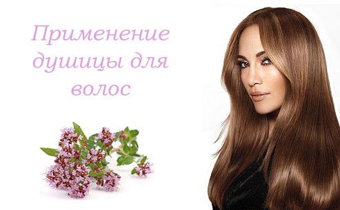 применение душицы для волос, лечебные свойства